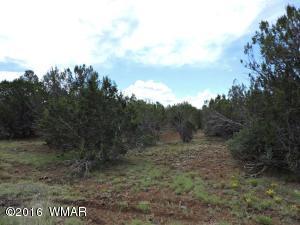 AB N3099, Vernon, AZ 85940