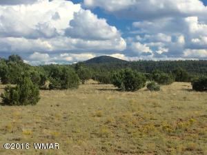 TBD Cinder Pit Road, Show Low, AZ 85901