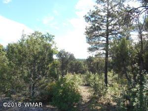1821 S Ridge Crest Dr., Show Low, AZ 85901