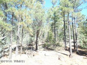1401 E Pine oaks Dr., Show Low, AZ 85901