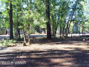 4468 BUCKING HORSE Trail, Pinetop, AZ 85935