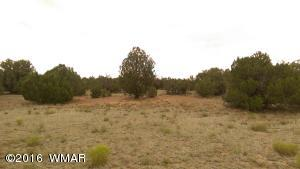 East 1/2 Tract 166 Tammaron Ranch U13, Concho, AZ 85924