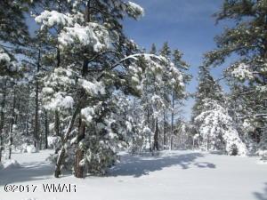360 W Aspen Trail, Lot 207 Sierra Pines, Show Low, AZ 85901