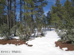 4300 W ACER, Show Low, AZ 85901