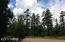 65 S PINE WOOD Lane Pinetop AZ 85935