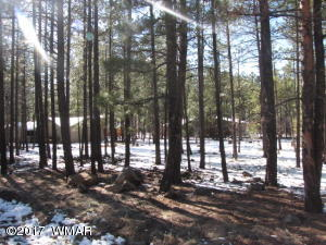 7312 Buck Springs Road, Pinetop, AZ 85935