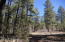 826 N Falcon Lane, Pinetop, AZ 85935
