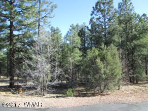 4241 W Wild Iris Lane, Show Low, AZ 85901