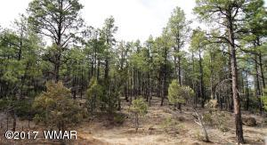 1.32 Acre Lot in the Gorgeous Sierra Pines Subdivision.