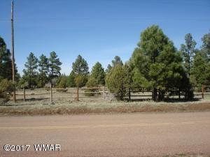 9626 Porter Mountain Road, Lakeside, AZ 85929
