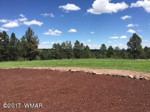 N1330 County Road, Greer, AZ 85927