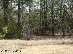 193 W Pine Shadow Drive, Lakeside, AZ 85929