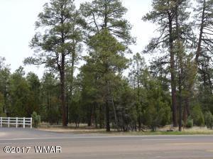 4900 W White Mountain Boulevard, Lakeside, AZ 85929