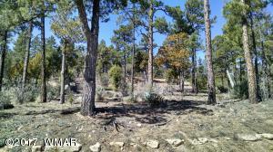 428 Pleasant View Drive, Show Low, AZ 85902