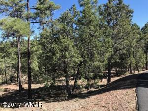 1310 Pine Oaks Drive, Show Low, AZ 85901