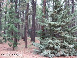 8496 Wild Horse Road, Pinetop, AZ 85935