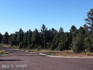 380 E Summerberry Drive, Show Low, AZ 85901