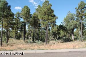 180 E Summerberry Drive, Show Low, AZ 85901