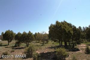 3281 Heritage Lane, Lakeside, AZ 85929