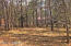 4415 Mogollon Vista Drive, Lot 73, Pinetop, AZ 85935
