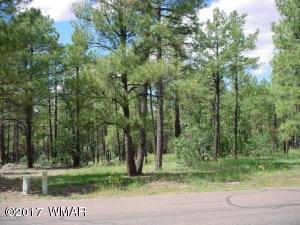 75 Pine Creek Drive, Lakeside, AZ 85929