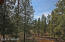 38721 State Route 373, Greer, AZ 85927
