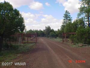 013D N Mountain Creek Trail, Lakeside, AZ 85929