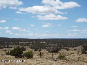 TBD Bourdon Ranch Rd, parcel 1, Show Low, AZ 85901