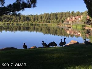 3191 E Rainbow Lane, Pinetop, AZ 85935