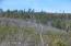 TBD Tiger Trail, Show Low, AZ 85901