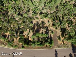 1880 S Twin Peak Trail, Show Low, AZ 85901