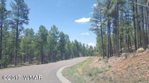 2281 S Bristlecone Drive, Show Low, AZ 85901