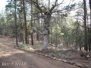 689 W Woodland Lake Road, Pinetop, AZ 85935