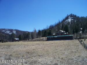 1 Greer Mt. Subdivision, Greer, AZ 85927