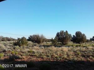 Lot 637 Woodland Valley Ranch, CR N6602, St. Johns, AZ 85936