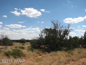 Sec 7 T14N,R17E:SW4,W4,NW4 CR, 1618 Mulvehill Dr., Heber, AZ 85928
