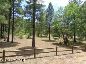 Lot 43 Osprey, Pinetop, AZ 85935