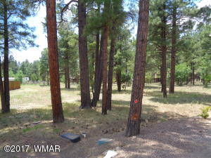 Lot 109 Meadow Lane, Pinetop, AZ 85935