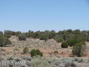 4650 Damron Valley, Snowflake, AZ 85937