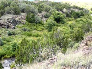 1926 Creekside Circle, Show Low, AZ 85901