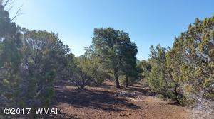 lot 21 N Mountain Pine Road, Vernon, AZ 85940