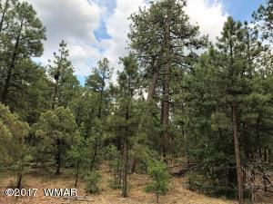 Lot 66 S Pine Wood Lane, Pinetop, AZ 85935