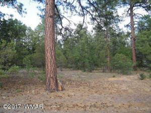1457 Oxen Ln, Lakeside, AZ 85929