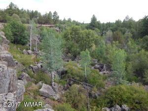 TBD N Canyon Creek Trail, Lakeside, AZ 85929