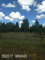 0 Porter Mountain Road, Lakeside, AZ 85929