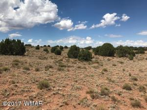 Ranch of the White Mountains--lot 33, Concho, AZ 85924