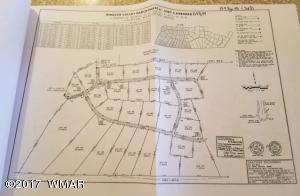 Lot 189 CR8643, Concho, AZ 85924