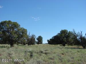 White Mountain Unit A-1 T14N R24E, Concho, AZ 85924