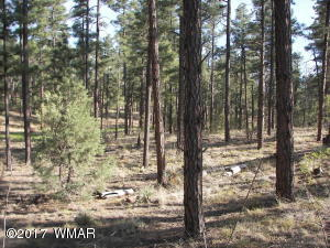 2990 W Alpine Ridge Road, Show Low, AZ 85901