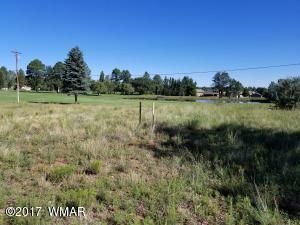 3760 W Old Linden Road, Show Low, AZ 85901